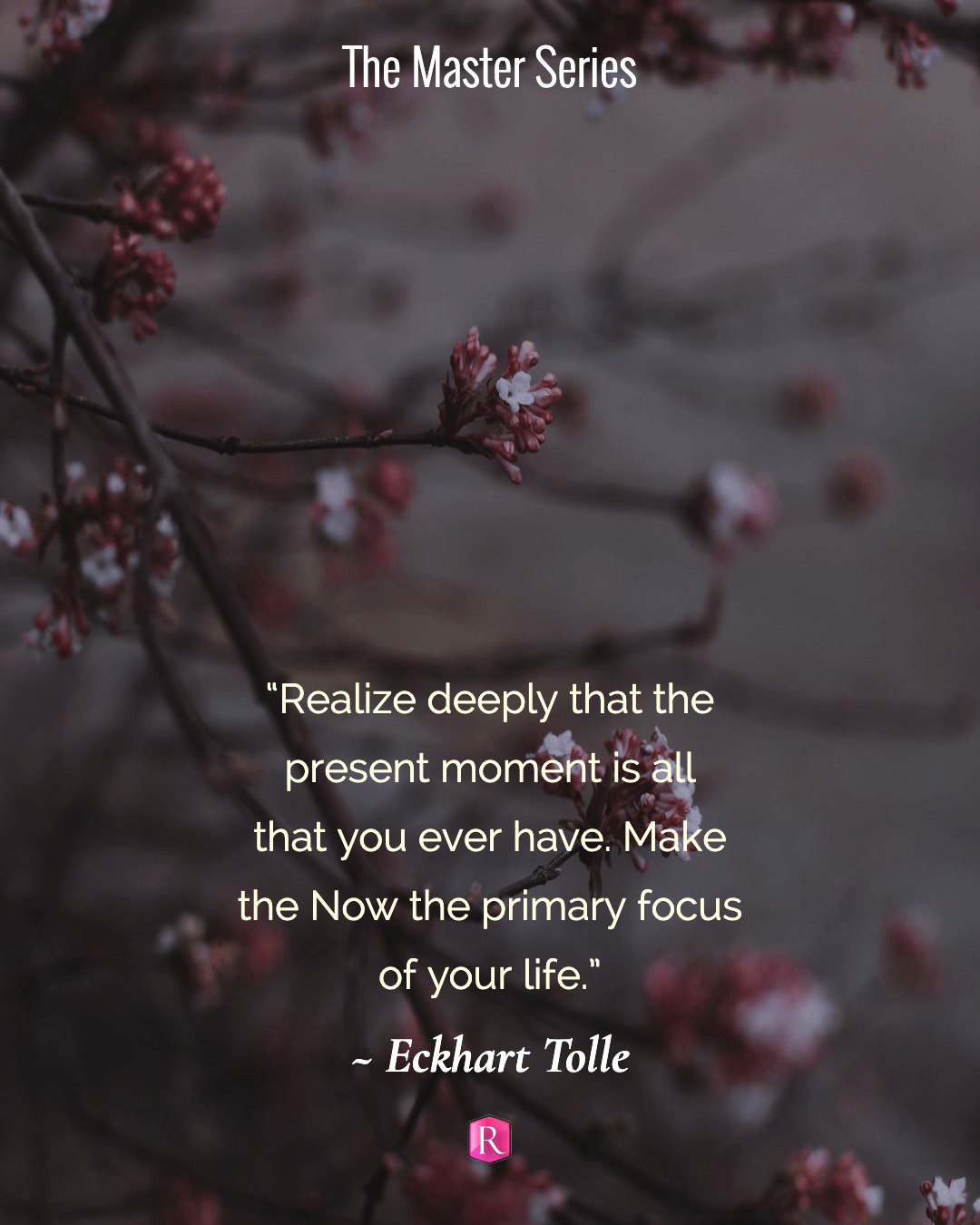 """""""Realize deeply that the present moment is all that you ever have. Make the Now the primary focus of your life."""" Eckhart Tolle"""